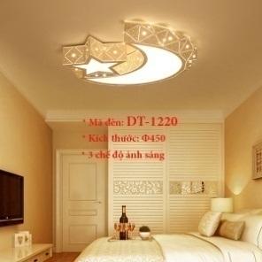 Đèn ốp trần trang trí VN-DT-1220