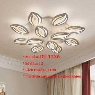 Đèn ốp trần trang trí VN-DT-1236