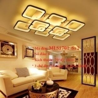 Đèn ốp trần trang trí VN-MLS1701-6+2