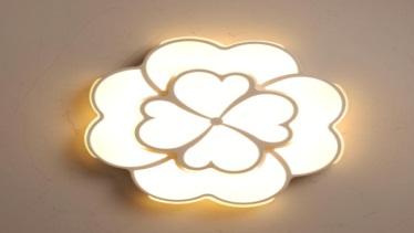 Đèn ốp trần trang trí VN-8105